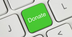 donate button fundraiser